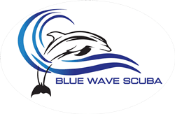 The-blue-Wave-logo-2-oval-background-250x163-1